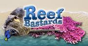www.reefbastards.it