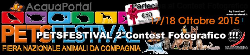 petsfestival_2015_contest_foto