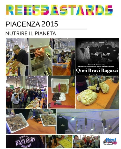 PETFESTIVAL 2015